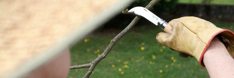Нож садовый Opinel №8, нержавеющая сталь, с изогнутым лезвием, блистер